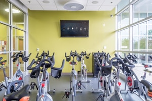 Wall Mounted TV and Exercise Bikes